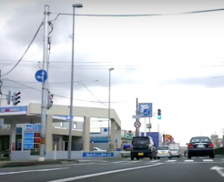 日本での運転海外の反応