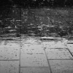 【海外の反応】「ニューヨークより楽しそう!」日本の台風の日の一日を映した動画